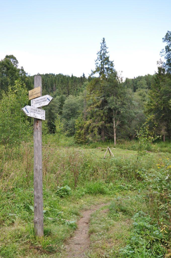 Ścieżka przyrodniczo-historyczna 'W dolinie górnego Sanu'