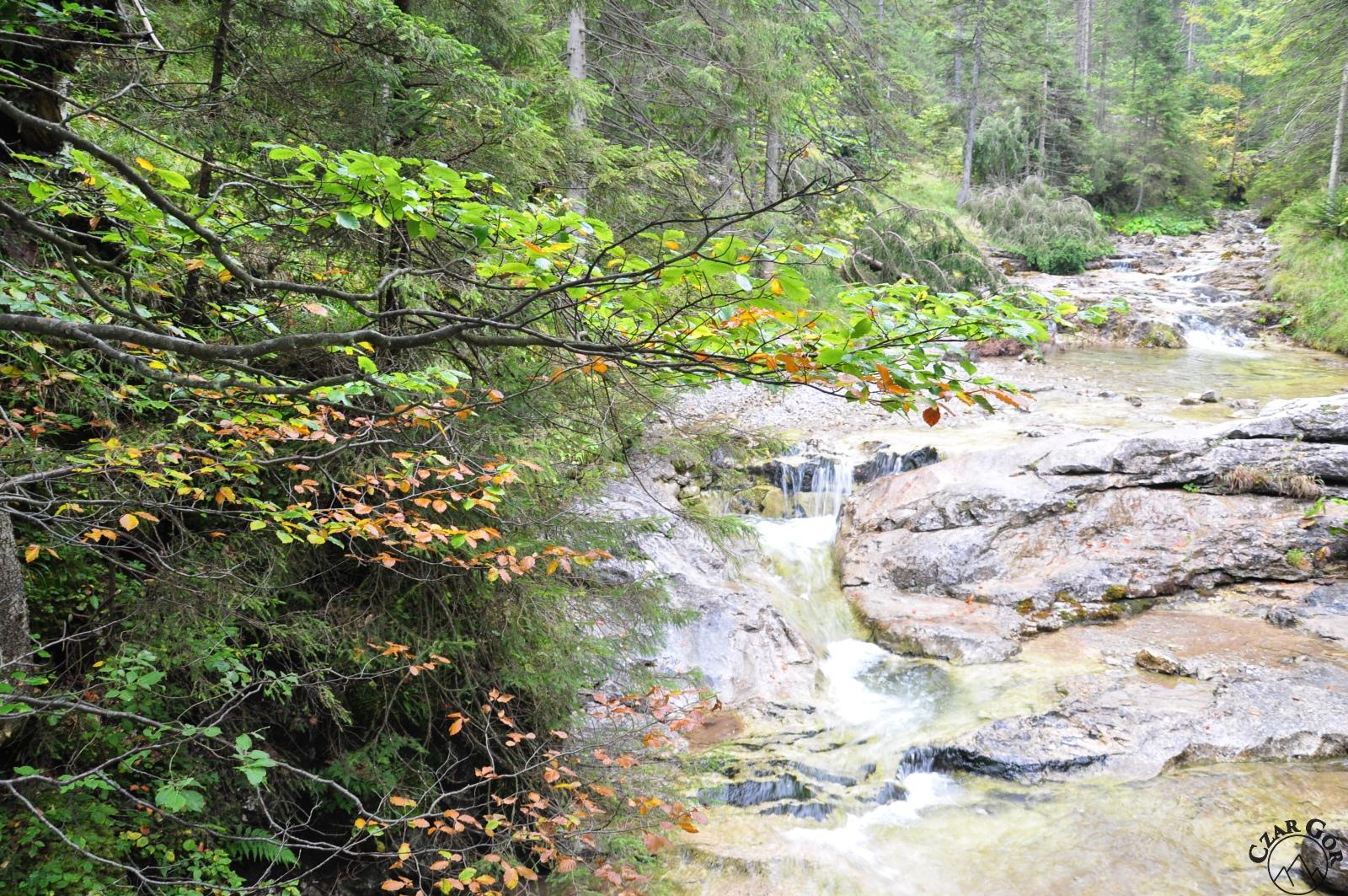 Jesień nad Białym Potokiem