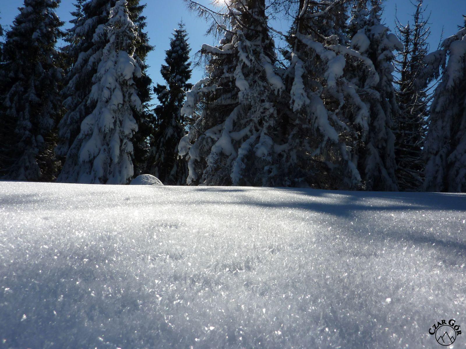 Zimowa sceneria w Worku Raczańskim