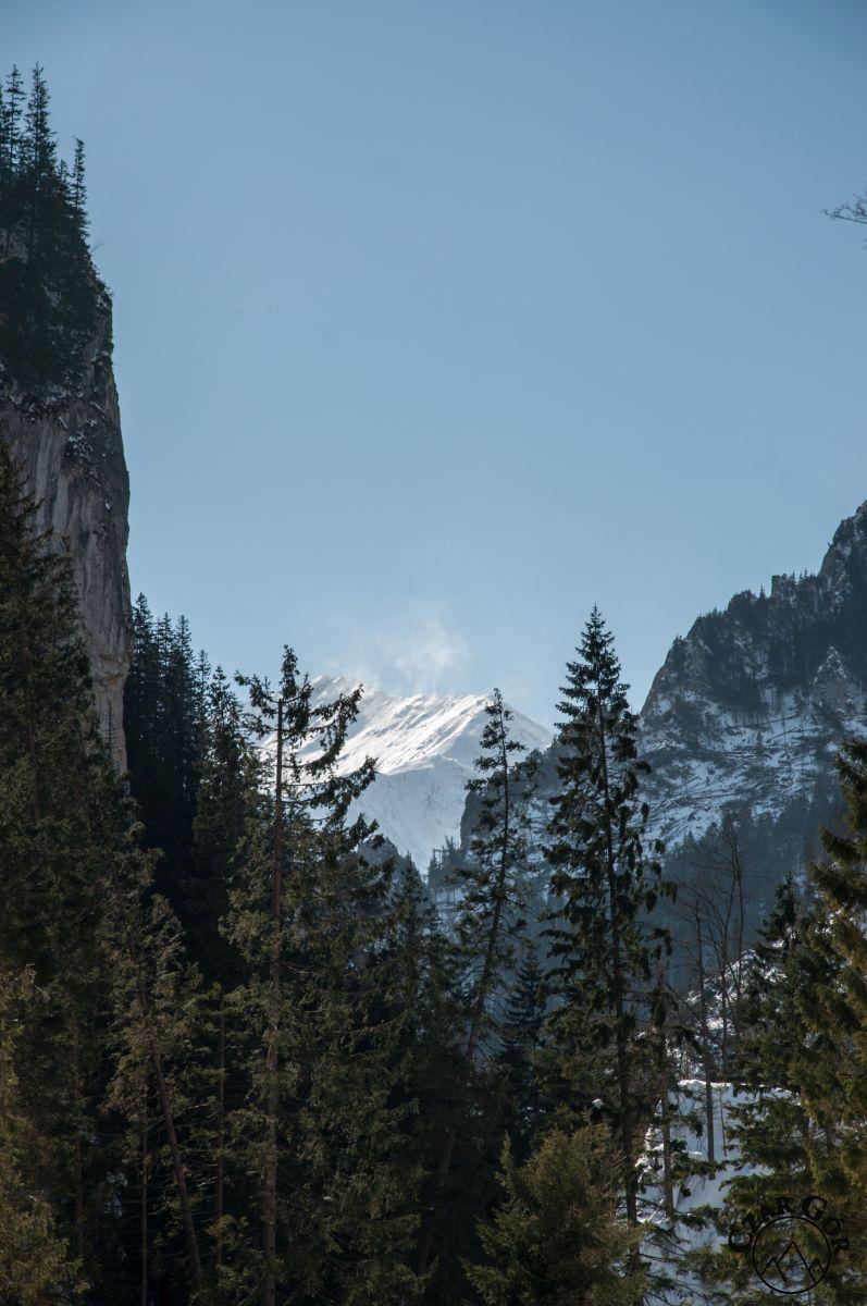 Wycieczka w Dolinie Kościeliskiej. Na Błyszcz