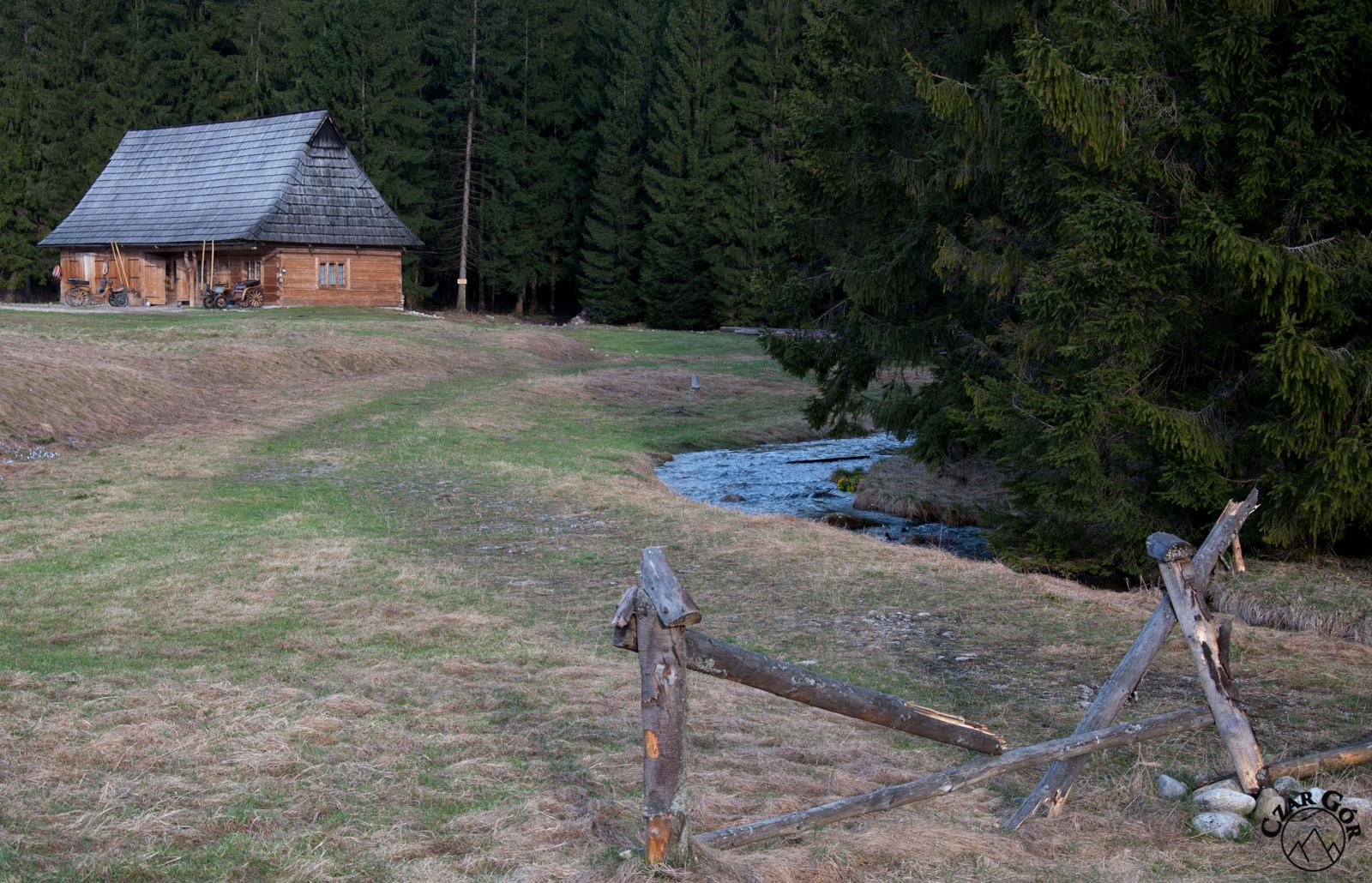 Pierwsze kroki w Dolinie Chochołowskiej