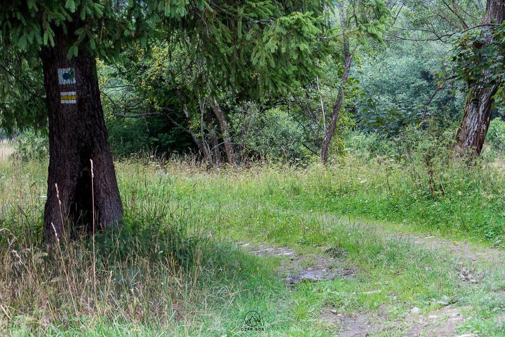 Zespół Zamkowo-Parkowy w Krasiczynie