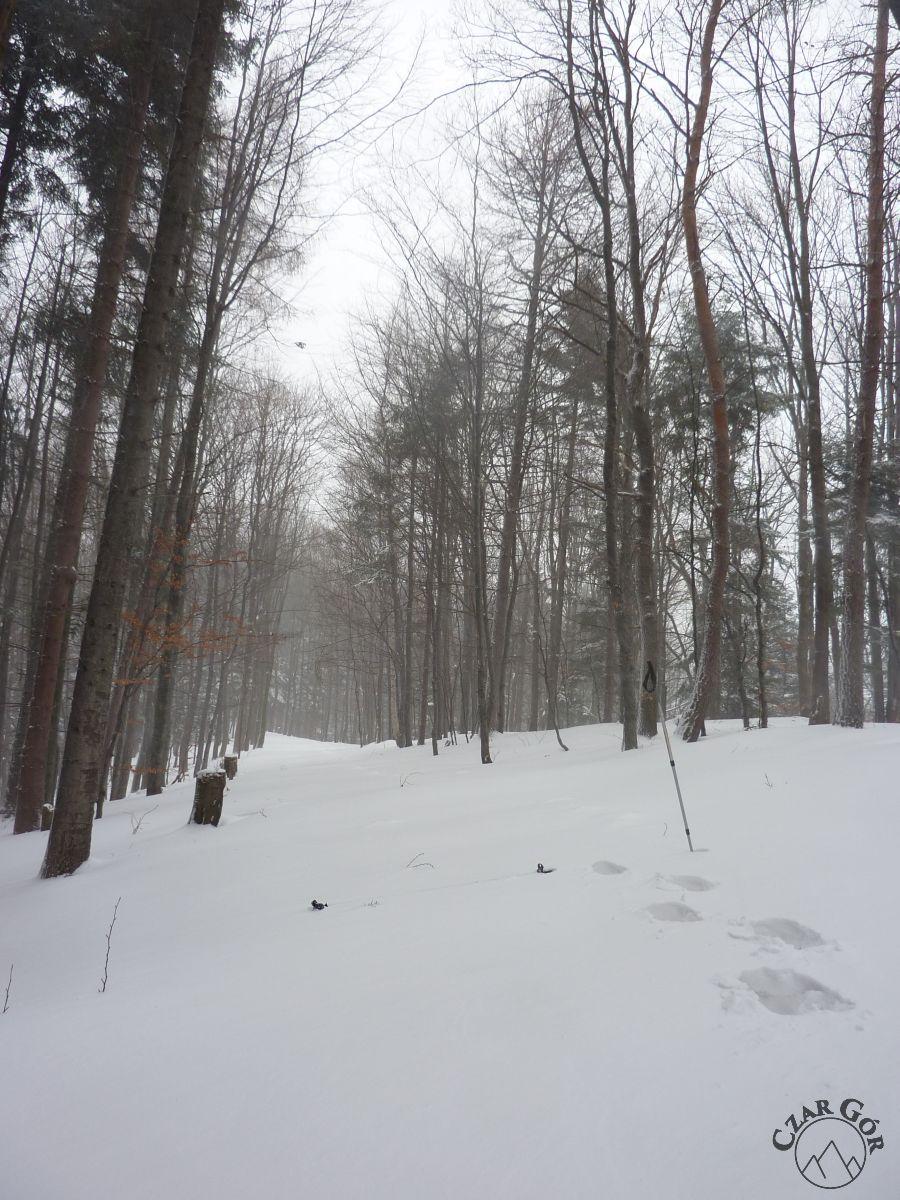 Śniegu było co niemiera