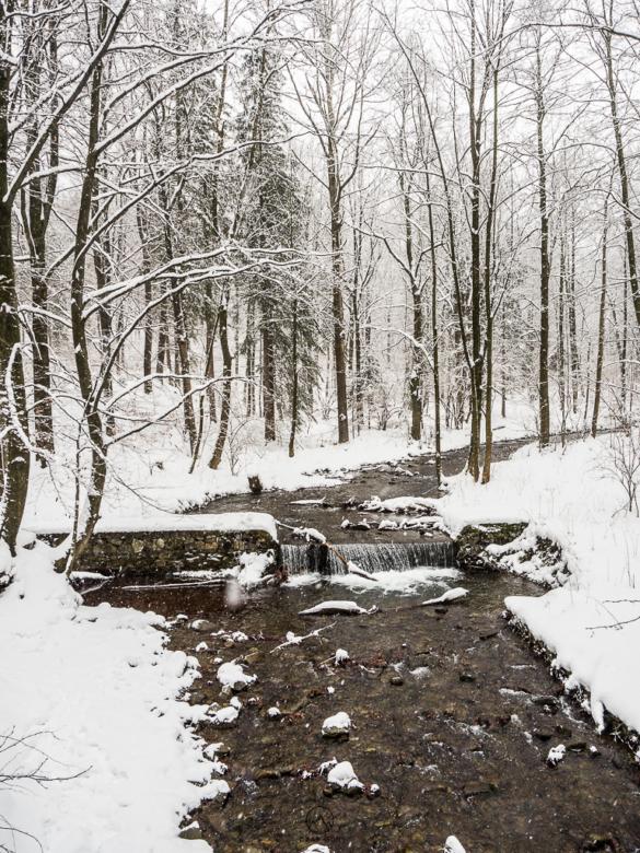 Potok Barbara w Dolinie Wapienicy