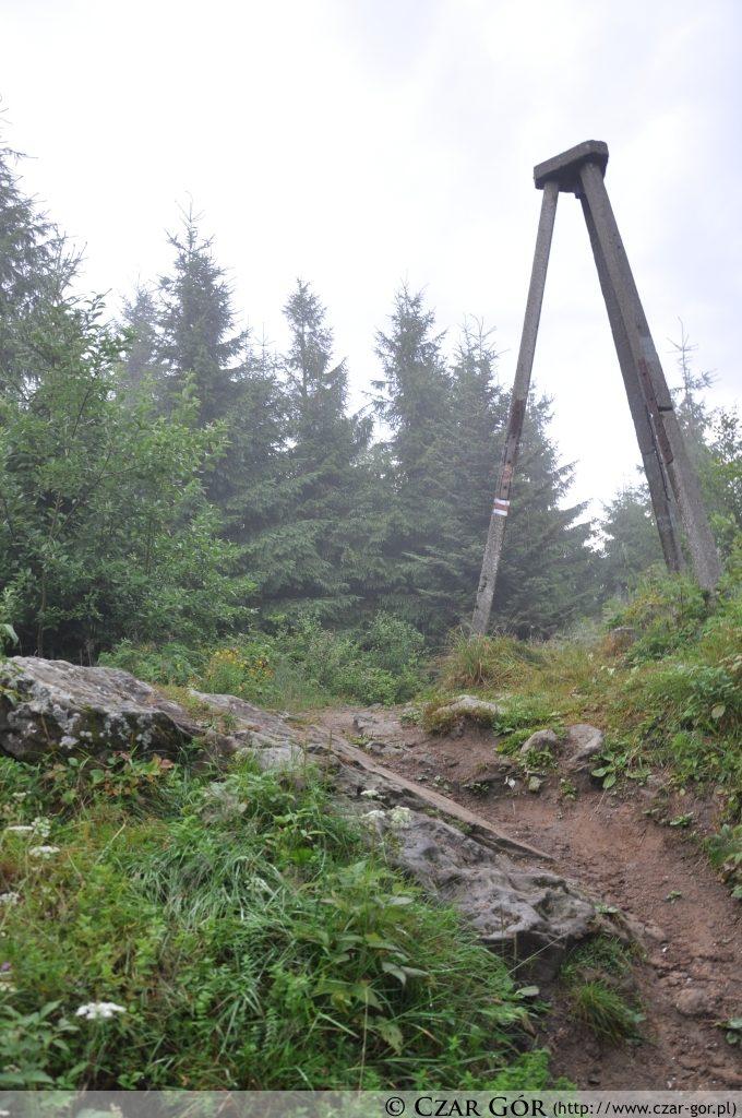 Skałka (1163 m n.p.m.) – szczyt w Beskidzie Sądeckim