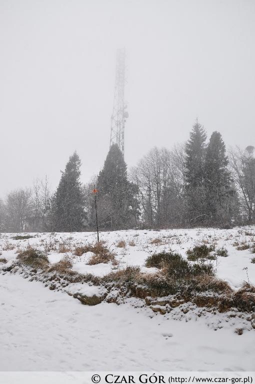 Wieża przekaźnikowa na Magurce Wilkowickiej