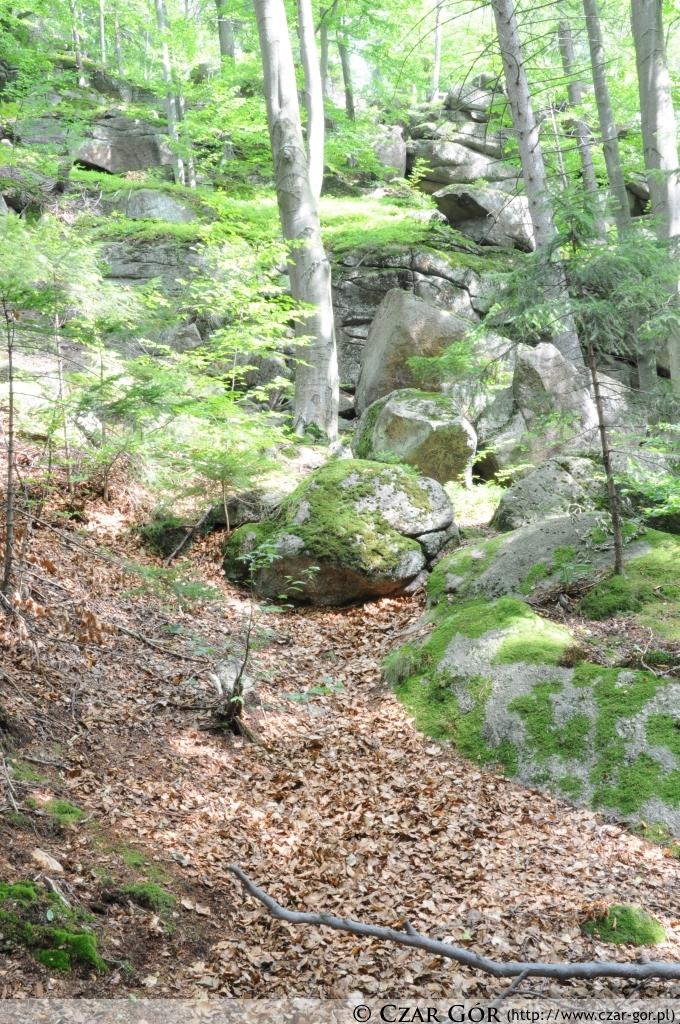 Otoczenie wodospadu Podgórnej