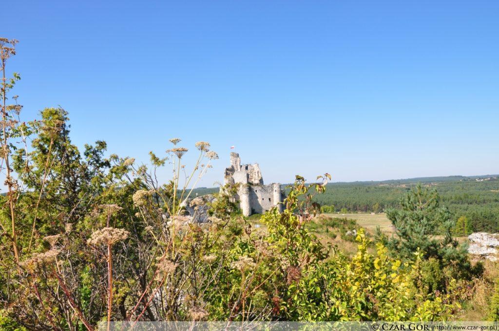 Mirów - Bobolice, w stronę zamku w Mirowie