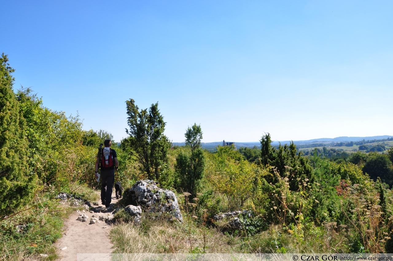 Droga z Mirowa do Bobolic
