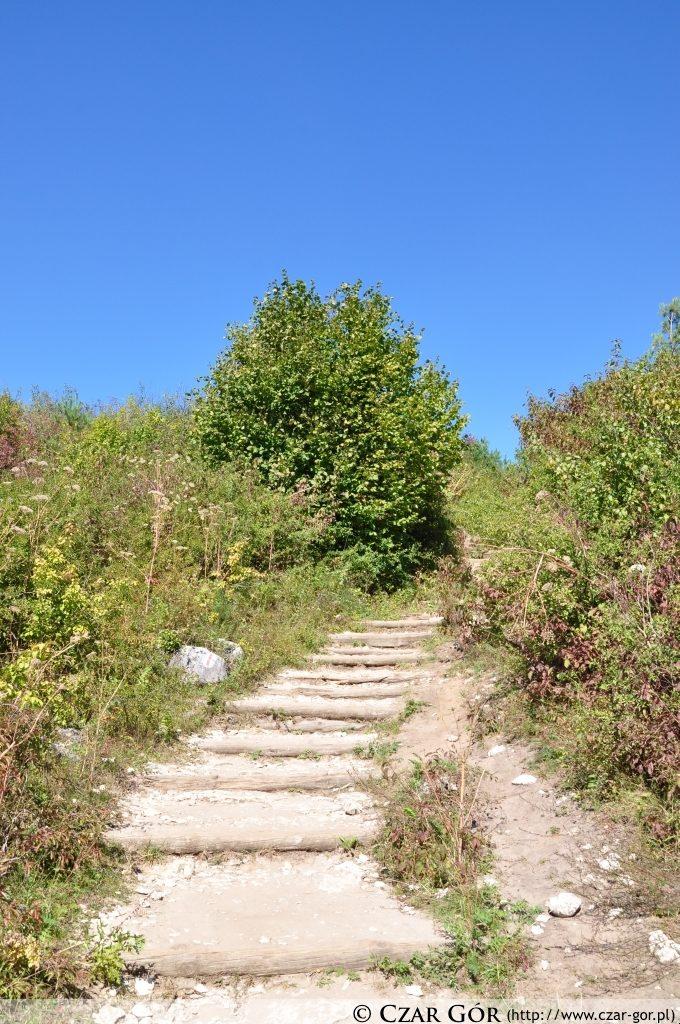 Na trasie do zamku w Boboilcach