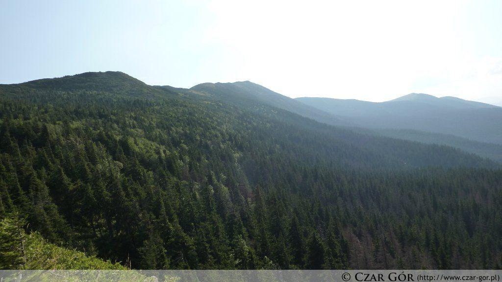 Widok z Sokolicy w stronę Babiej Góry