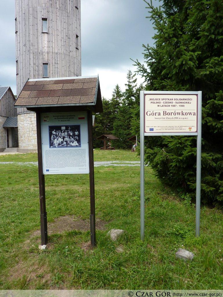 Pamiątkowa tablica na Borówkowej