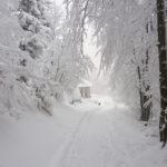 Wyrusz zimą na szlak