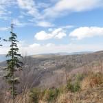 Z przełęczy Kocierskiej na Górę Żar
