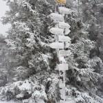 Brnąc po kolana w śniegu na zatłoczony Leskowiec