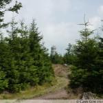 Wielka Sowa i Kłodzka Góra – dwa szczyty, jeden dzień