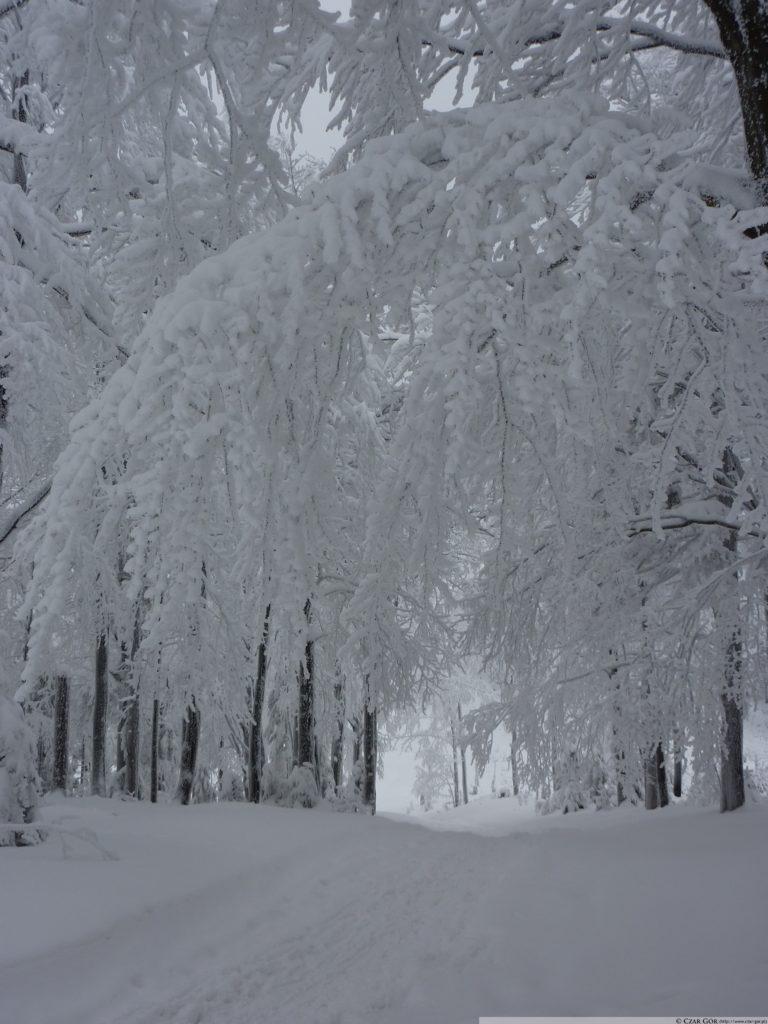 Zima na szlaku