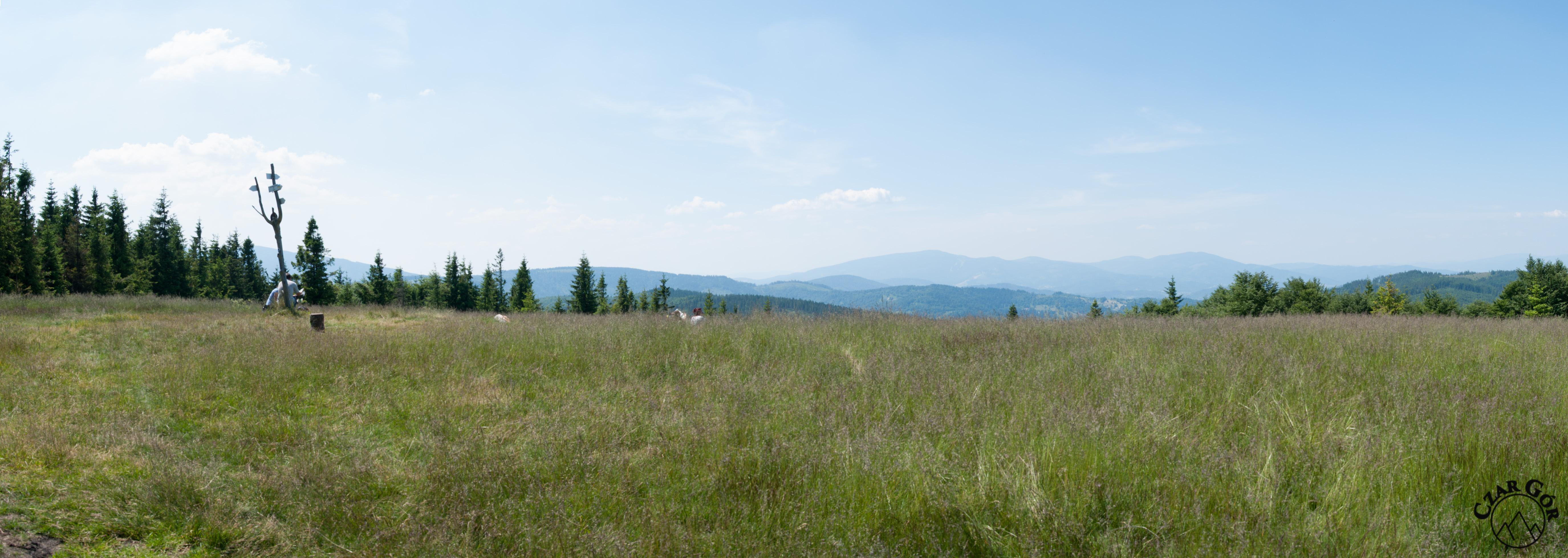Panorama z Jałowca w stronę Beskidu Żywieckiego